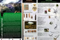 Cueva del Lagrimal - Museo Arqueológico de Villena